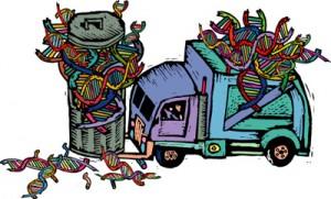 DNA basura
