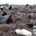 La necesidad del decrecimiento sostenible